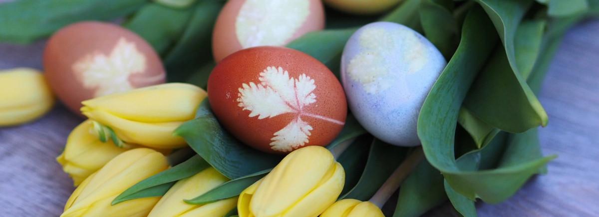 Velikonoční vajíčka bez chemie